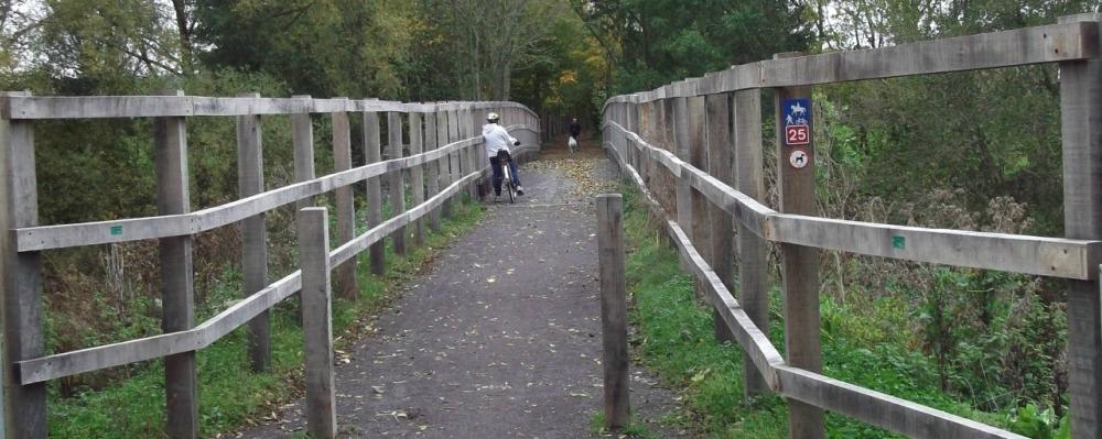 Train Trail Trot Poole Runners